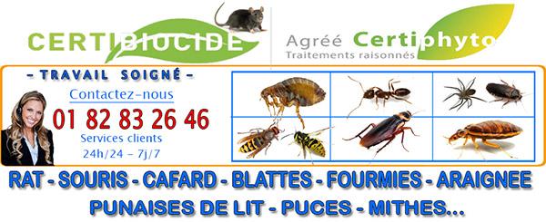 Traitement Punaise de lit Béthemont la Forêt 95840
